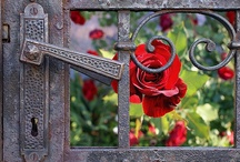 "secret garden / Lovely ""off the path"" garden inspiration / by Beth Fava"