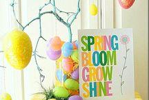 Season   Spring / by Melissa Dunlap