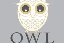 owls / by Bernice Desmond