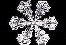 snowflake / by usagi nomedama
