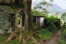 Irish Roots / by Theresa Ayers