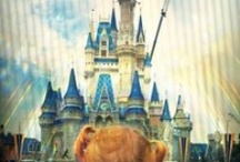 DISNEY Tripping / Tips and Ideas for a trip to DisneyWorld / by Debbie Evans Baggett