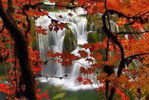 Love: waterfalls / by Diane Marston