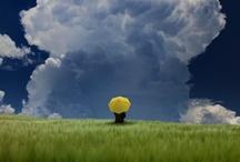 Photoshoot Inspiration / Great ideas for photoshoots / by María-Jesús Verdugo