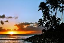 Hawaii / by Meredith Close