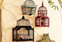 Caged Beauty / Birdcage addiction / by Amanda Robinson