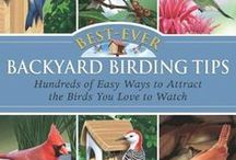 Backyard Birding / Backyard birding is a great activity for people of all ages. Learn how to build houses and feeders, and some of the best ways to attract birds to your yard. / by Somers Library