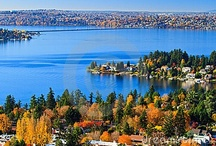 Fall/Autumn in Bellevue / by Visit Bellevue Washington