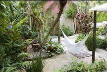 jardim e quintal / by Zoy Maria
