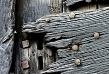 wood grain / by Linda Teague