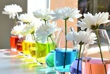 Table Decor Products & Settings / by GiftSolutionsEtc