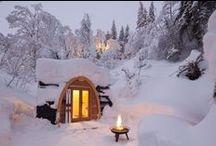 My Future Cabin  / by K. Fuhrmeister