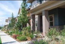 Conservatory Green Neighborhood / by StapletonDenver