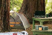 Camping / by Charly Bennion