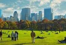 NYC Trip / by Jennifer S.