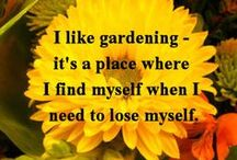 Gardening Fun / by Nadine Anderson