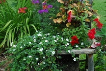 Pretty gardens / by Shirley Cole-Georgeson