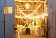 Event Planning: Decor / by Krissy Schmidt