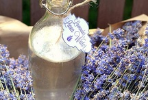 Cleaning Tips & DIY Cleansers /   / by ~Gabriellyn~