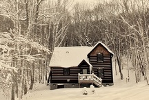::Cabin & Cottage Pron:: / Someday I will own a little place of my own on a mountain, near a lake, in the forest. / by Colleen Lucas