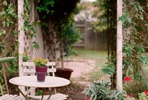 Dream gardens / by Sophia Niemeyer