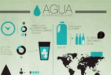 Infographic / by Leo Dal