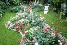 fun garden Ideas / by Diane Carroll