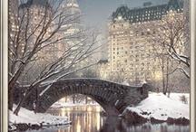 Winter Wonderland / by Sheri Frame