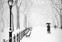I Love....NYC / by Sheri Frame
