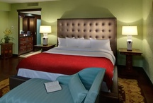 Stay in St. Louis / Whether you're looking for a cozy Bed & Breakfast or a full-service hotel with all the comforts of home, there's an exciting assortment of accommodations in St. Louis.  / by Explore St. Louis