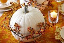 Autumn: Halloween + Thanksgiving / by Georgia