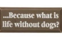 """ღ✻ Ode to Dogs ✫*¨`*✶ / """"Dogs are not our whole life, but they make our lives whole."""" / by Deb"""