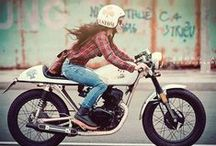Cafe Racers / by Dime City Cycles