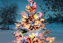 Christmas / by Kristin Dempsey