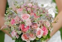 Wedding / by Kristen Hasbrouck
