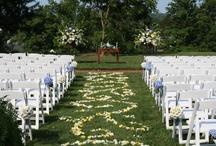 Weddings / by Carolyn Helfrich