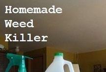 DIY Home Made Easier / by Alisha Pendergraff