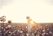 Wedding / Never really thought I'd plan a wedding...some day <3 / by Kristin Barnett