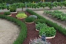Home-Gardening / by Katie Entrekin