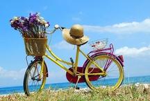 Bikes & Flowers / by Deb