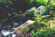 """Camping / """"Keep close to Nature's heart...and break clear away, once in awhile, and climb a mountain or spend a week in the woods. Wash your spirit clean."""" -JM / by Allie Rowe"""