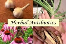 { ALL N-A-T-UR-A-L } / Healthy, Natural Alternatives / by Shannon Smith