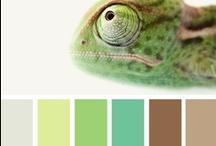 Colors. / by Kaylyn Leigh Braga