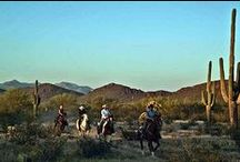 Arizona / by Beth Weathers