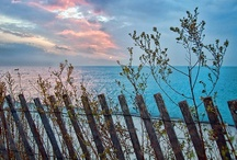 Down by the Sea / by Rhonda Byrd