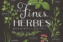 Herbs Now and Then: A View From the Past to Present Day / by Mary Nell Jackson