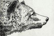 Illustrate / by Bekky Halls