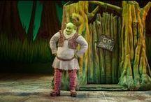 Shrek Ideas / by Shirley Lawton