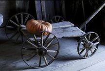 Fall Harvest... / by Denise Linney