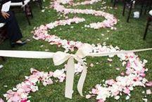 ~Wedding~ / by T'Lesa Meadowcroft